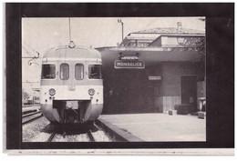 TEM14012  -   BOLOGNA  5.6.1987    /    STAZIONE DI MONSELICE   -  51° FIERA DI BOLOGNA - Stazioni Con Treni