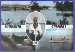 Carte Postale 62.  Camiers   Ste-Cécile  Médaillon  Très Beau Plan - Altri Comuni