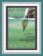 Malediven 1995 O/used - Wasservögel - Waterfowl - Sauvagine - (Aythya Nyroca) (*A-1-19) - Patos