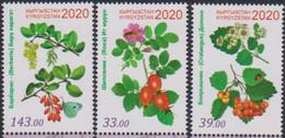 KYRGYZSTAN, 2020, MNH,  MEDICINAL PLANTS,3v - Heilpflanzen