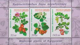 KYRGYZSTAN, 2020, MNH,  MEDICINAL PLANTS,SHEETLET - Heilpflanzen