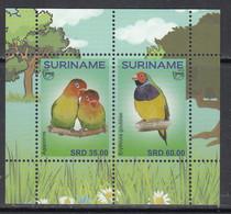 2018 Surinam Suriname Love Birds Oiseaux Souvenir Sheet  MNH - Suriname