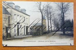 Florenville. Avenue De La Station. - Florenville