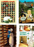 FROMAGES / Lot 42 C.P.M écrites - 5 - 99 Cartoline