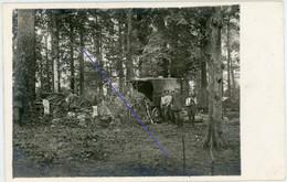 Allemande Carte Photo - Haplincourt -  Bois Stellung  - .WWI 1.WK - 1914-18