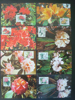 CHINA  45 MAX CARDS And POSTAL STATIONERIES / 6 SCANS - Collections, Lots & Series