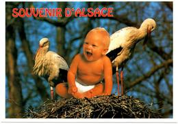 ENFANTS : Souvenir D'Alsace - Retratos