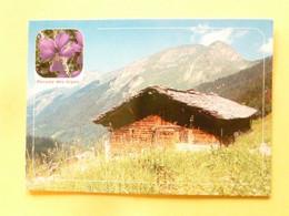 V11-A-38--images De Chez Nous- En Montagne La Pensee Des Alpes-chalet - Sin Clasificación