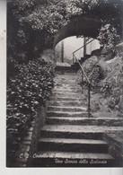ROSSENA  REGGIO EMILIA  CASTELLO  SCALINATA  VG  1957 - Reggio Nell'Emilia
