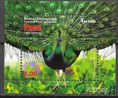 BOSNIA, MUSLIM, 2020, MNH, FAUNA, BIRDS, PEACOCKS, S/SHEET - Peacocks