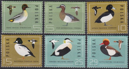 F-EX27366 POLAND POLONIA MNH 1985 OISEAUX BIRD AVES PAJAROS DUCK PATOS. - Patos
