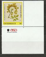 Personalisierte BM Rudolf Gallers Herbarium Engel- Oder Brustwurz ** Postfrisch - Private Stamps