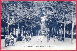 C.P. Nancy = Une  Allée  De La Pépinière - Nancy