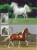 Brazil 2016 Complete Series 2 Maximum Card Stamp RHM-C-3592/3593Diplomatic Relations Slovenia Horse Horseshoe Animal - Cavalli