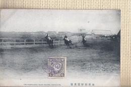 The Kashiwano Race Couse, Hakodate (chevaux) (Hokkaido, Japon) - Non Classificati