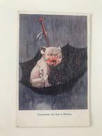 """Carte Postale Ancienne (1925) Signée Par Un Illustrateur Anglais Non Identifié """"Somewhere The Sun Is Shining"""" - Other Illustrators"""