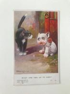 """Carte Postale Ancienne (1925) Signée Par Un Illustrateur Anglais Non Identifié """"WHAT ARE YOU UP TO NOW ?"""" - Other Illustrators"""