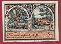 Allemagne 1 Notgeld  De 20 Pf  Stadt  Roda ( RARE) Dans L 'état   Lot N °371 - Collections