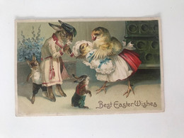 Carte Postale Ancienne (1914) En Relief Best Easter Wishes - Dressed Animals