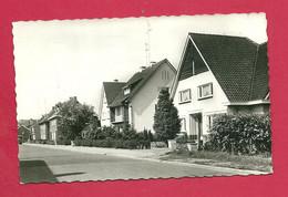 C.P. Neerpelt = Nieuwstraat - Neerpelt