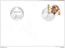 90 - 83 - Enveloppe Avec Cachets Illustré D'Orvin 1994 - Postmark Collection