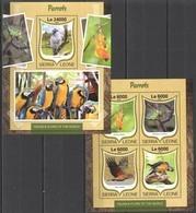 ST280 2016 SIERRA LEONE FAUNA & FLORA OF THE WORLD BIRDS PARROTS KB+BL MNH - Parrots