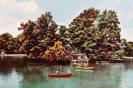 Cartolina - Parma - Parco Ducale - Laghetto - 1958 - Parma