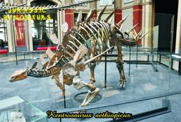Carte Postale, Animaux Prehistoriques, Jurassic Dinosaurs, KENTROSAURUS AETHIOPICUS - Andere