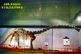 Carte Postale, Animaux Prehistoriques, Jurassic Dinosaurs, Klamelisaurus Gobiebsis - Andere