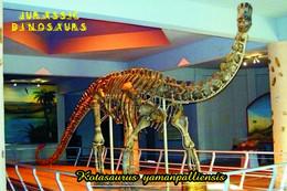 Carte Postale, Animaux Prehistoriques, Jurassic Dinosaurs, Kotasaurus Yamanpalliensis - Andere