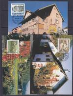 Liechtenstein 1999 Maler Aus Liechtenstein / Eugen Verling 3v 3 Maxicards (53315) - Cartoline Maximum