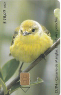 Nº 176 TARJETA DE CUBA DE UN CANARIO DE MANGLAR (BIRD-PAJARO) - Cuba