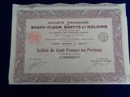 FRANCE - STE FRANCAISE SPATH-FLUOR, BARYTE & DOLOMIE - ACTION DE 100 FRS - PARIS 1928 - Unclassified