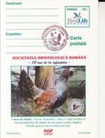 97327- WESTERN CAPERCAILLIE, BIRDS, ANIMALS, POSTCARD STATIONERY, 2000, ROMANIA - Hühnervögel & Fasanen