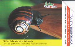 UR-025 TARJETA DE CUBA DE UN CARACOL (ESCARGOT-SNAIL) - Cuba