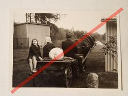 Photo D'époque. Original. Les Agriculteurs Transportent La Citrouille Sur Un Chariot. URSS - Gegenstände