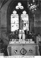 Nozeroy Chapelle Louise De Savoie - Altri Comuni
