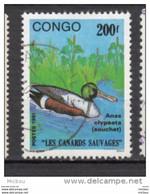 Congo, Canard, Duck, Oiseau, Bird - Patos