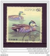 Japon, Japan, Oiseau, Canard, Bird, Duck - Patos