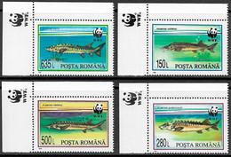 Romania Stamps 1994 - Fauna WWF Fish - MNH - Nuevos