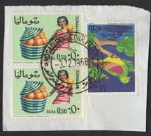 Somalia Somalie Mogadiscio Mogadishu Agricoltura Maracuja Passion Fruit Agriculture Frutto Della Passione FRB00070 - Somalia (1960-...)