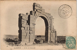 CPA AK LAMBESE L'Arc De Commode ALGERIE (1146189) - Other Cities