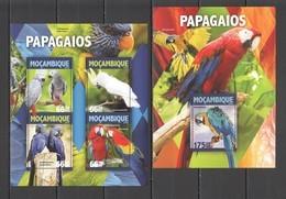 ST2157 2016 MOZAMBIQUE MOCAMBIQUE FAUNA BIRDS PARROTS 1KB+1BL MNH - Parrots