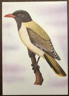 Sao Tomé E Principe: Intero, Stationery, Entier, Oriolus Crassirostris - Sparrows