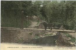 HERAULT : Lamalou Le Haut, Passerelle De La Piscine Romaine, Carte Couleur... - Lamalou Les Bains