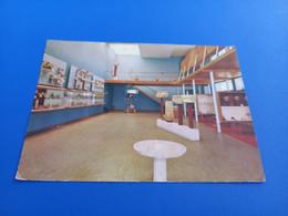 CARTOLINA GELA- INTERNO MUSEO-VIAGGIATA 1972 - Gela