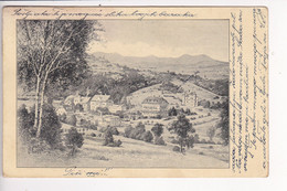 SL1521  --  DRZAVNO ZDRAVILISTE TOPOLSICA  --  1929 - Slovenia