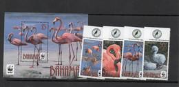 WWF - BAHAMAS  - WW / FLAMINGOES SET OF 4 + SOUVENIR SHEET  MINT NEVER HINGED  SG CAT £27.75 - Nuevos