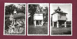 270721 - 3 PHOTOS Années 1950 - 81 LABASTIDE DE LEVIS Pigeonnier - Sonstige Gemeinden