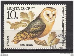 Russie, Russia, Hibou, Owl, Rapace, Oiseau, Bird, Chêne, Oak - Owls